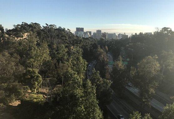 バルボアパークとダウンタウン・サンディエゴの風景